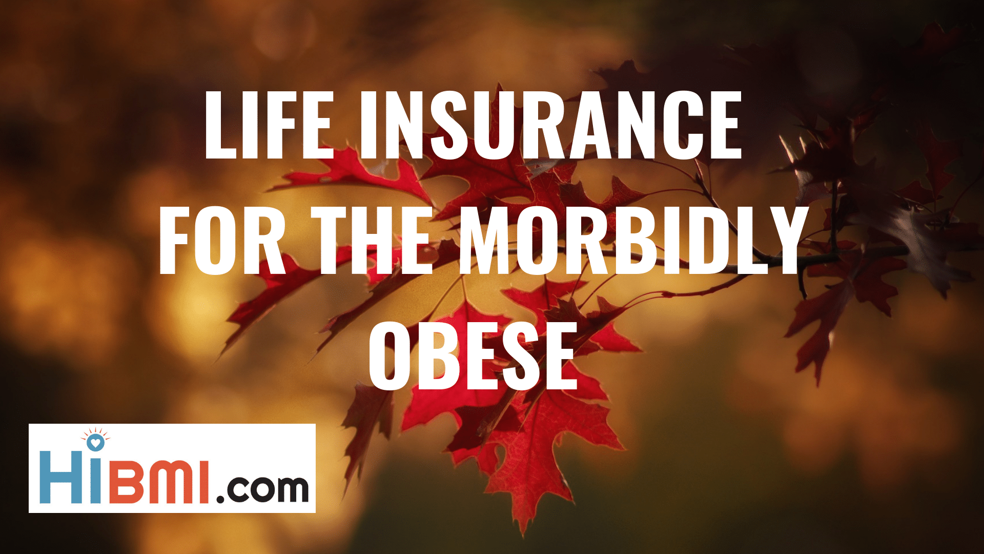 life insurance for the morbidly obese, term life insurance, whole life insurance