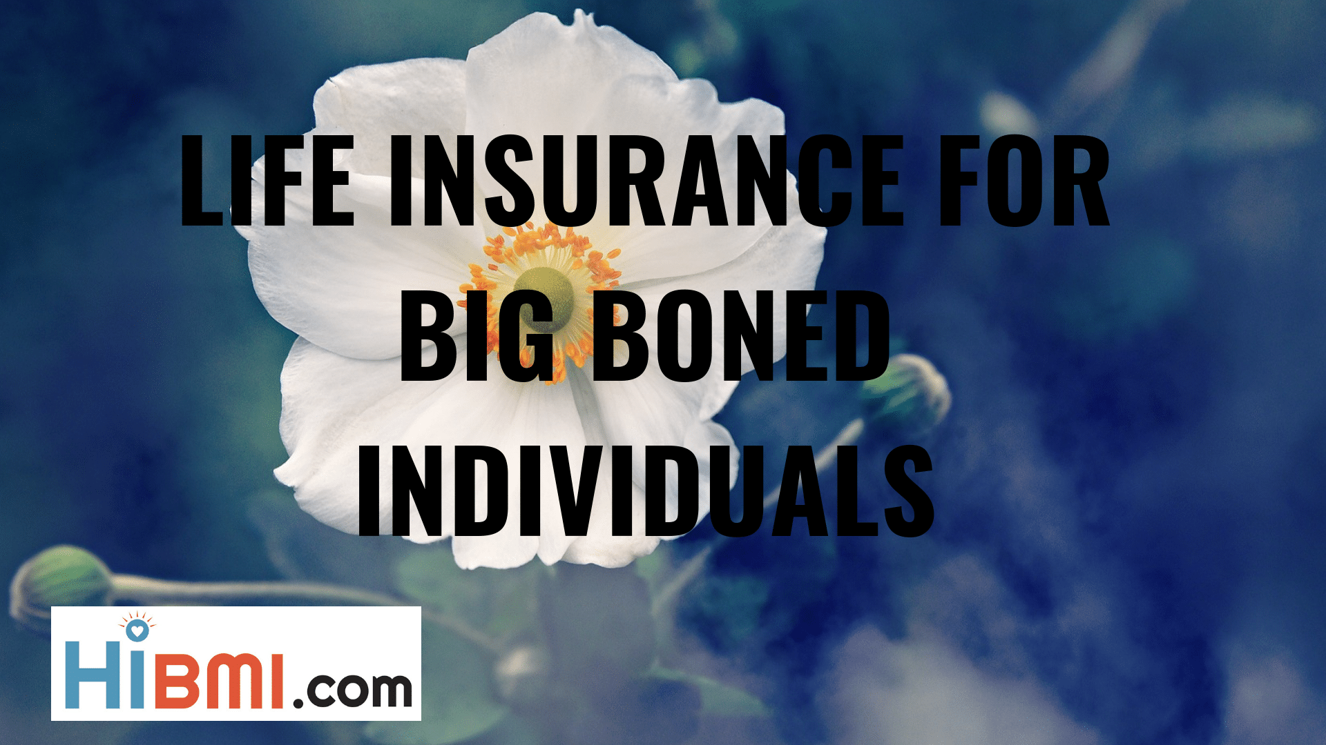 life insurance for muscular individuals, life insurance for big boned people, term life insurance, whole life insurance