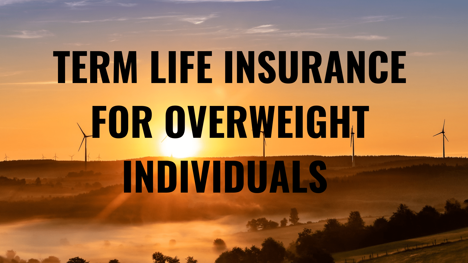 term life insurance for overweight, term life insurance for obese, term life insurance, level term life insurance