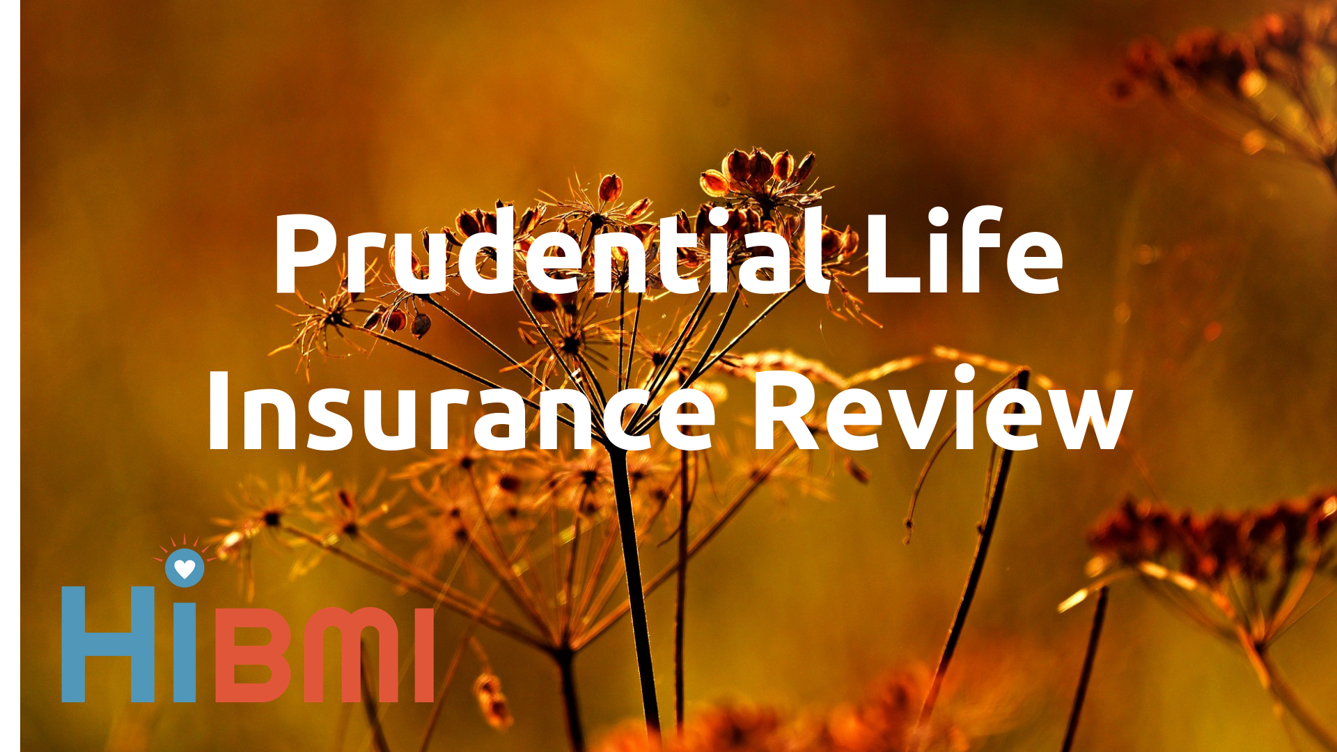 prudential life insurance review, whole life insurance, term life insurance, universal life insurance, insurance riders, get a quote now, get insured fast